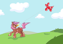 LeeLee-Kite Flying-Maple Style